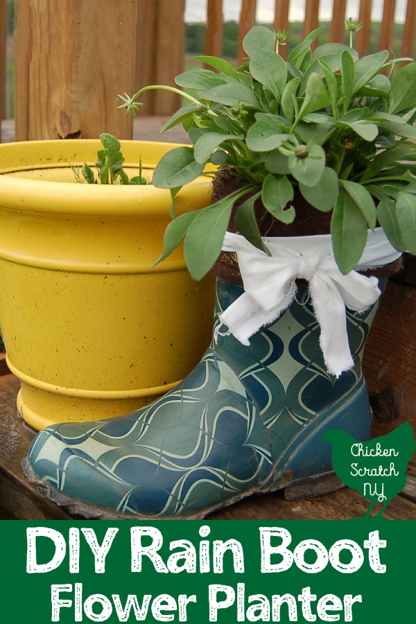 blue patterned rainboot with dwarf flowering coreopsis inside on a woded deck with a yellow planter in the background