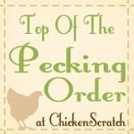 Chicken Scratch NY