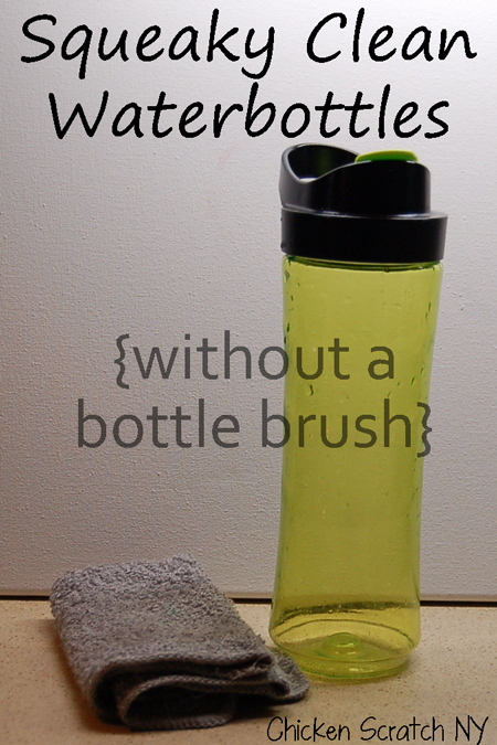 Squeaky Clean Water Bottles without a bottle brush