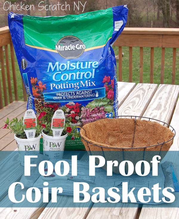 Miracle Gro Potting Soil Project