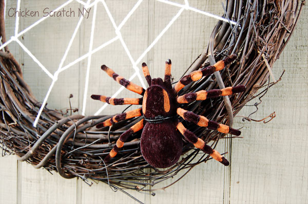 Halloween Orange & Black Spider