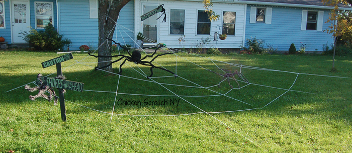 Giant Lawn Spider Webs