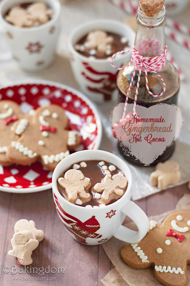 Homemade-Gingerbread-Hot-Cocoa-by-©Bakingdom