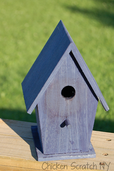 Dyed Birdhouse
