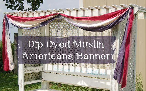 Dip Dyed American Banner with Liquid Fabric Dye