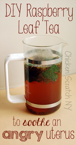 Make your own black raspberry tea to end period pain