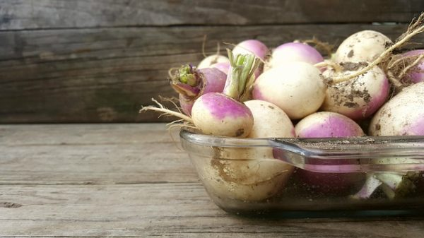 white turnip in bowl