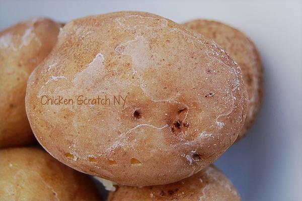 Salt-Crusted-Potato