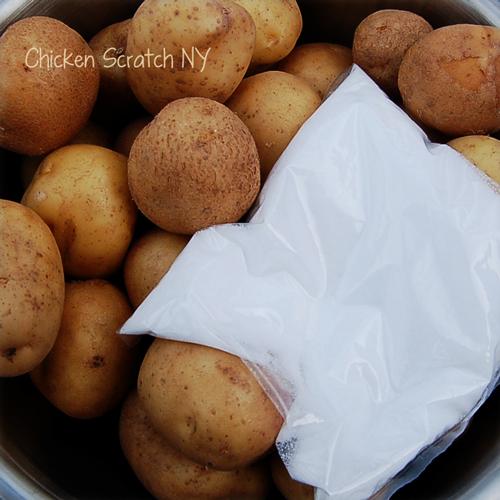 New Potatoes and Salt for Salt Potatoes