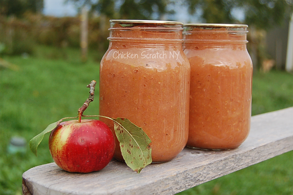 Turn your ugly apples into applesauce without peeling, dicing or coring for a tasty, healthy treat
