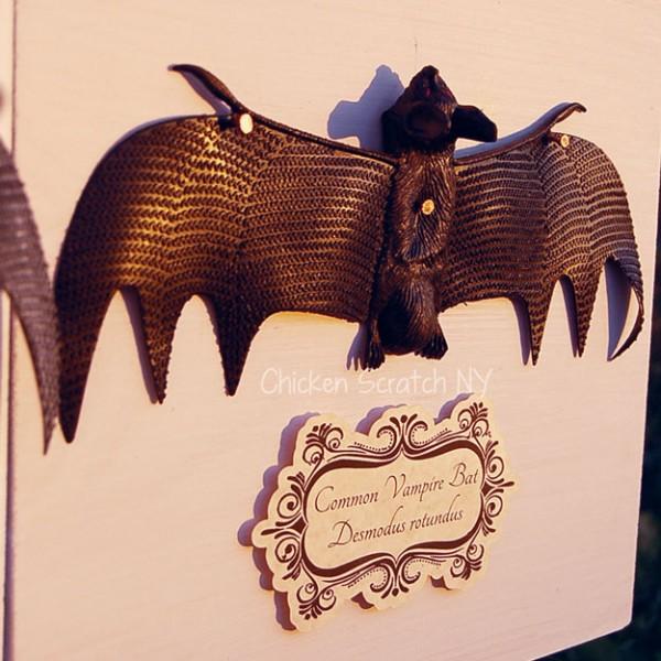 Vampire Bat Specimen Art