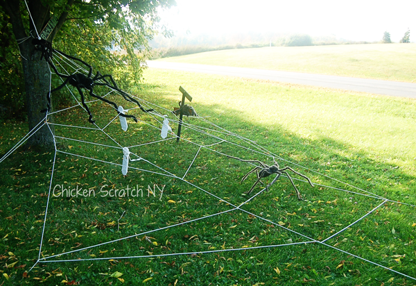 Halloween Spider Webs with Dangling Mummified Spider Snacks and Warning Signs