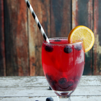 Meyer Lemon Blueberry Soda