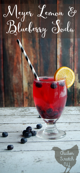 A healthy, homemade Meyer Lemon Blueberry soda with real food ingrediants (an no artificial or processed ingrediants) is a delicious way to brighten your day