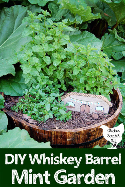 half whiskey barrel planted filled with a variety of mints and a DIY fairy house