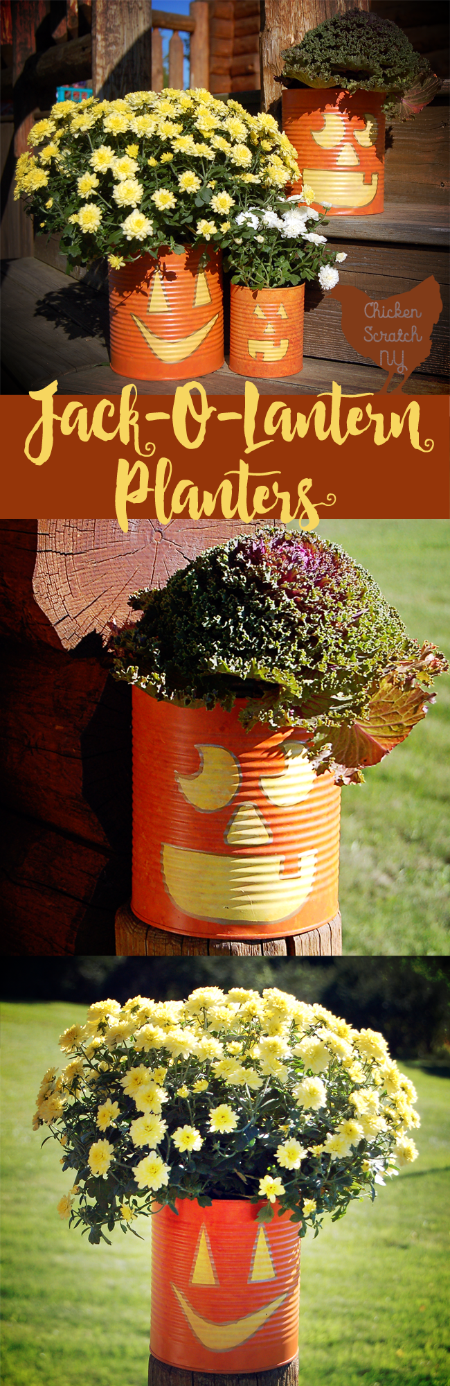 Whip up a set of Jack-O-Lantern Planters from tin cans this fall. Fill them with seasonal flowers for a fun pop of color on your front porch.