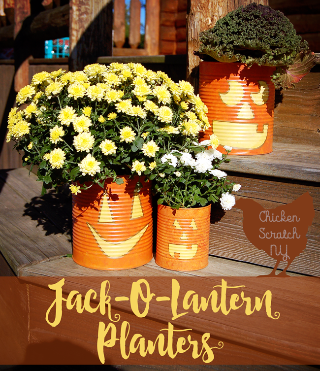 Whip up a set of Jack-O-Lantern Planters from tin cans this fall. Fill ...