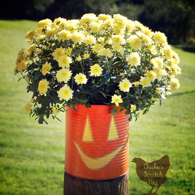 Whip up a set of Jack-O-Lantern Planters from tin cans this fall. Fill them with seasonal flowers for a fun pop of color on your front porch