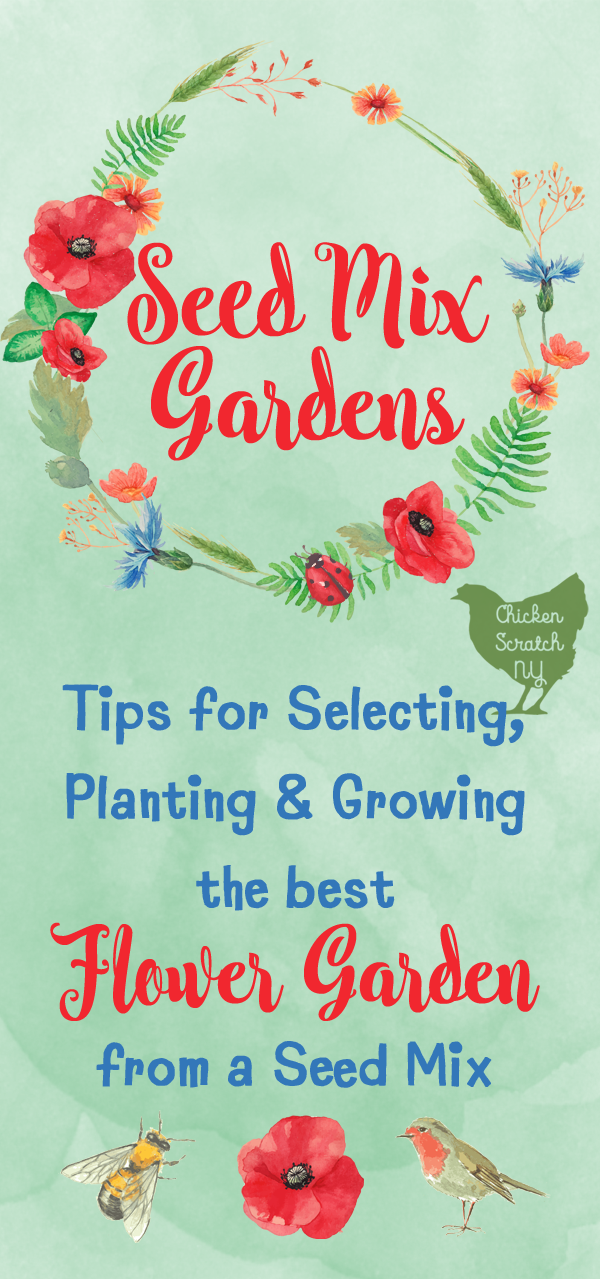 Grow a beautiful flower garden from a single seed packet. I'm sharing my tips and tricks for selecting the best mix and getting the most out of it