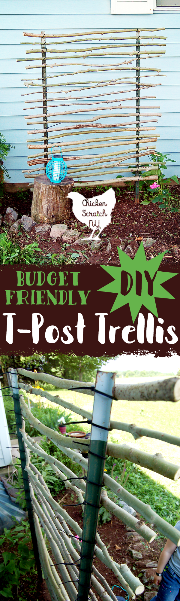 Give your climbing plants a hand with this budget friendly t-post trellis. T-posts, zip ties and branches come together to make a charming garden accent