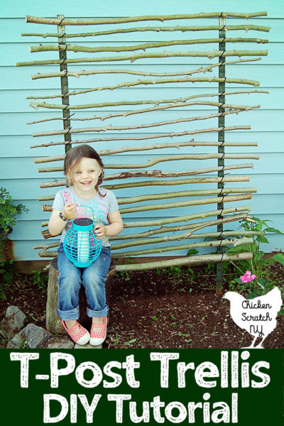 little girl sitting infront of homemade trellis made with branches, zip ties and t-posts