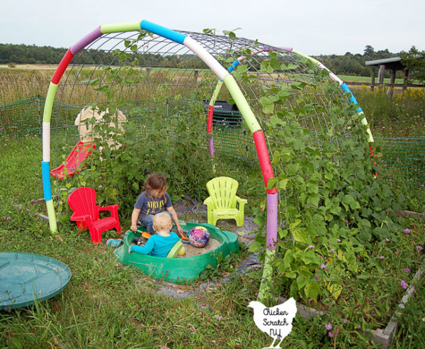 Create a whimsical & practical garden hideaway with this Cattle Panel Arch. It's quick & cheap to throw together and sturdy enough to handle beans or gourds