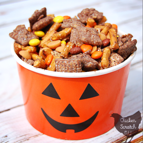 Mix chocolate coated cereal with a few salty & sweet treats to make a batch of puppy chow trail mix to bring along on your next hayride or pumpkin hunt