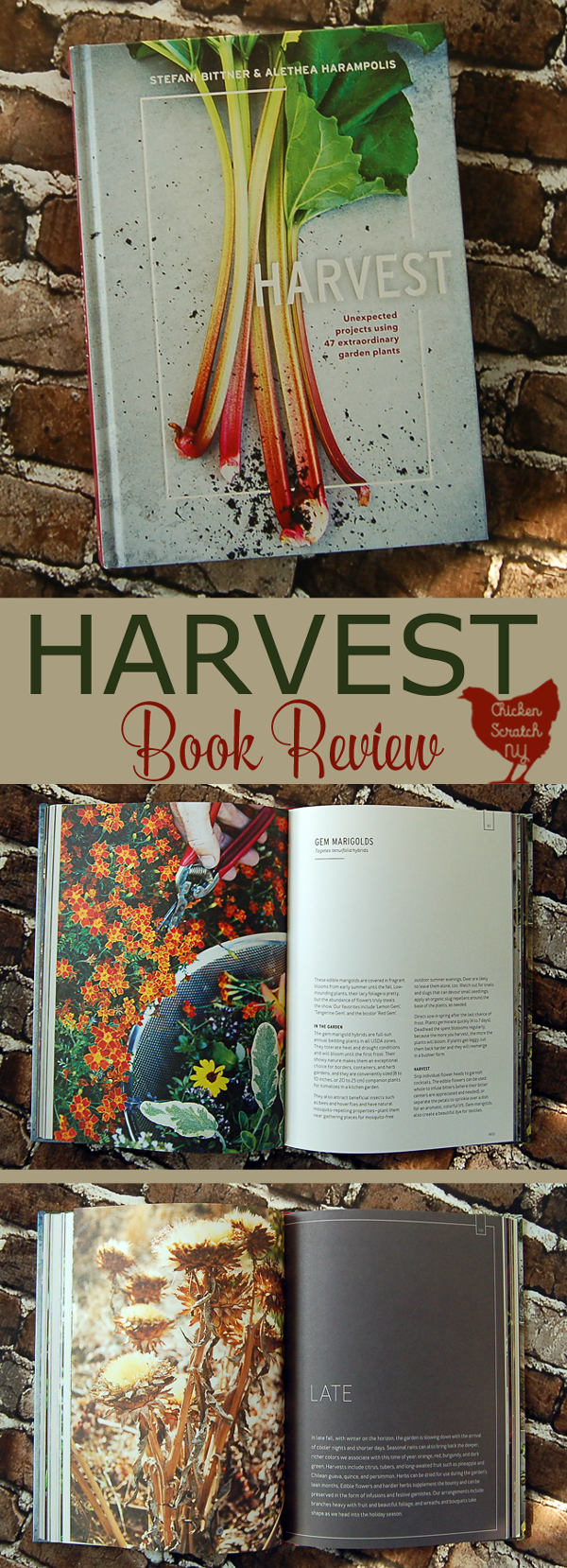Harvest Book Review