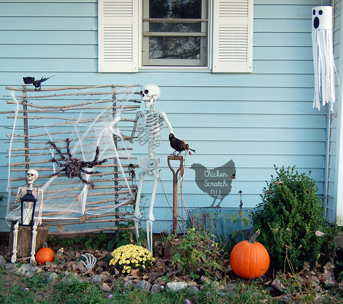Halloween Skeleton Display for Day & Night