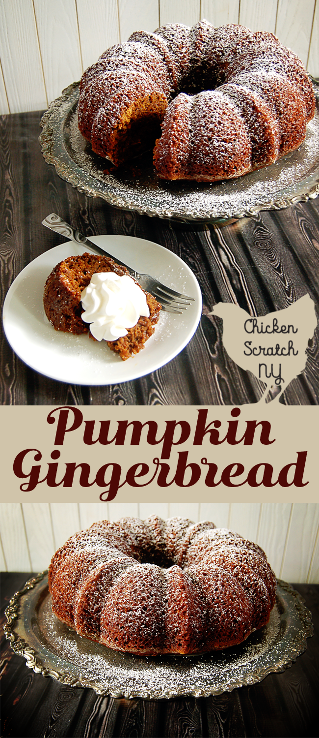 Spicy, sticky and moist, this pumpkin gingerbread is the perfect accompaniment to a hot cup of coffee and a dollop of whipped cream