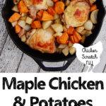 chicken dinner, cast iron recipe, sweet potato dinner
