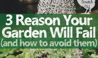 watering plants with text overlapy 3 reasons your garden will fail and how to avoid them