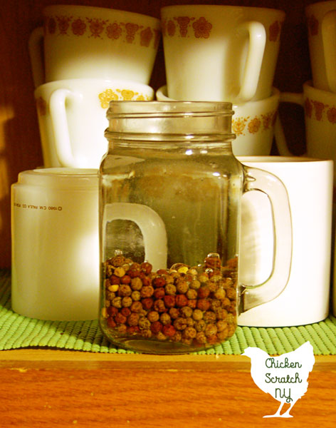 pea seeds soaking in a mason jar cup in a cabinet