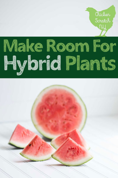 "seedless watermelon with text overlay ""make room for hybrid plants"""
