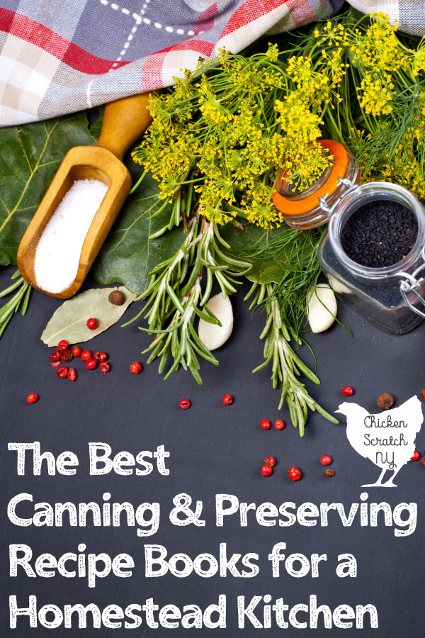 collection of canning and preserving ingredients scattered across a grey surface with text overlay best canning and preserving books for the homestead kitchen