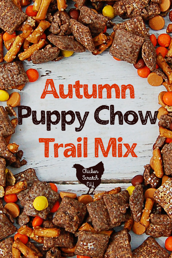 Enjoy this fall twist on the classic sweet and salty Chex cereal treat! Peanut butter, chocolate & extra goodies make up a delicious bath of autumn puppy chow or muddy buddies #snack #muddybuddies #puppychow #trailmix