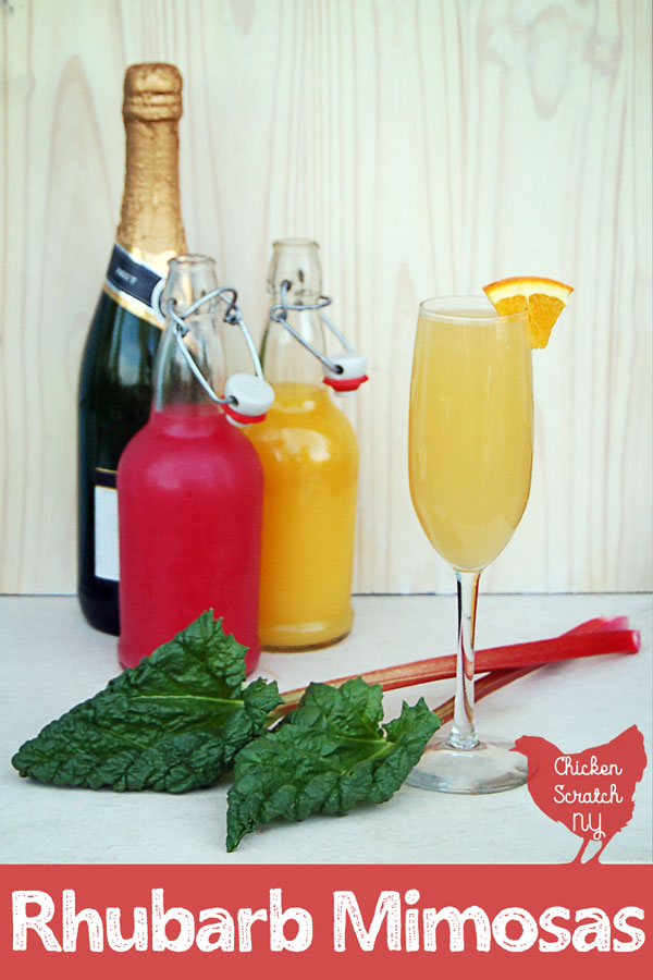 champagne, orange and rhubarb juice in flip top bottles, champagne glass filled with rhubarb mimosa with orange garnish with two stalks of rhubarb