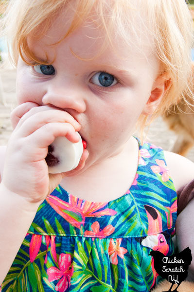 little blonde girl eating red velvet oreo truffle