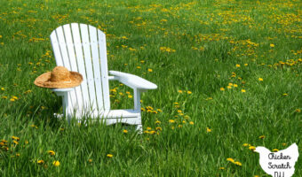 white Adirondack chair in a green field filled with dandelions