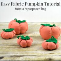 Fabric Pumpkin Tutorial for Beginners