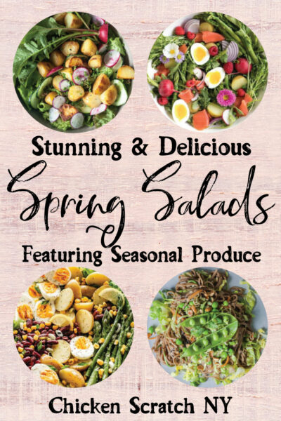 four differerent spring salads featuring seasonal ingredients