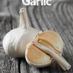 hardneck garlic bulb