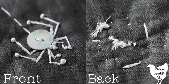 front and back view of a button spider