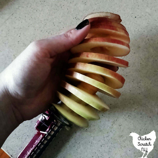 apple slinky being pulled of the apple closre after running it through apple peeler corer slicer without peeler