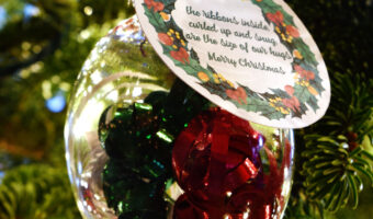 plastic ornament filled with curling ribbon with a gift tag with a poem about hugs hanging in a Christmas tree with white lights and red ornaments