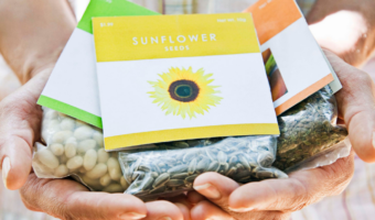 """hands holding three packets of seeds with text overlay """"all about garden seeds. When & where to buy, how to store and more"""""""