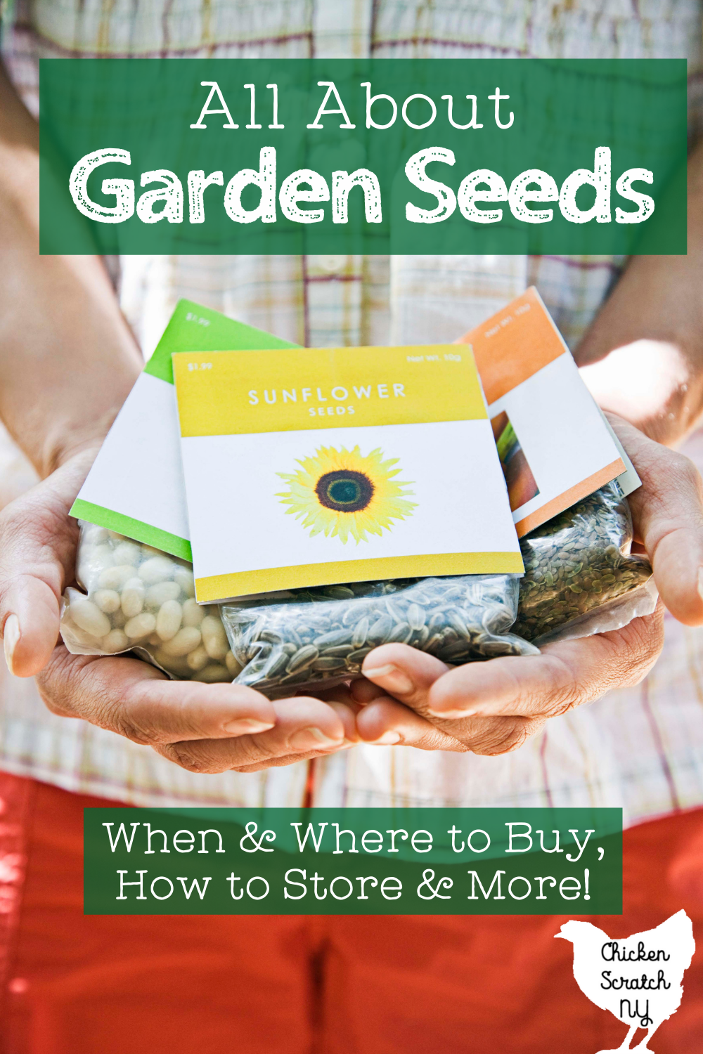 "hands holding three packets of seeds with text overlay ""all about garden seeds. When & where to buy, how to store and more"""