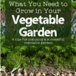 wide view of a vegetable garden showing several rows of crops with text overlay: what you need to grow in your vegetable garden - 4 tips for a successful garden without getting overwhelmed