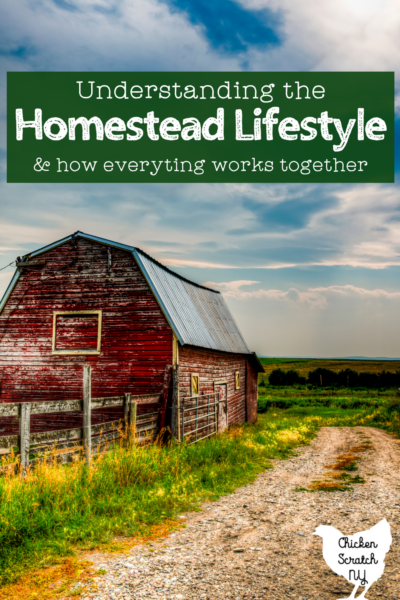 """red barn in a field with text overlay """"understanding the homestead lifestyle"""""""